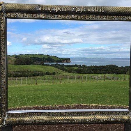 Shakespear Regional Park Photo
