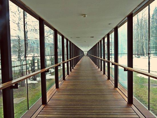 Dolenjske Toplice, Slovenien: The panorama bridge between Hotel and Wellness