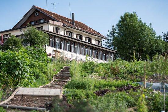 Rigi Kaltbad, Suiza: Aufsicht aus unserem Kräutergarten mit 340 verschieden Kräutern