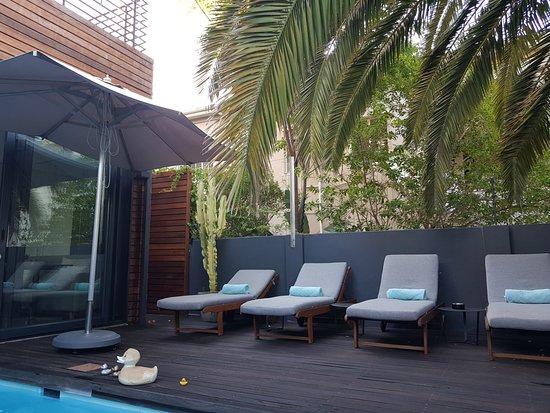 The Tree House Boutique Hotel  168    U03361 U03367 U03367 U0336  - Updated 2018 Prices  U0026 Reviews
