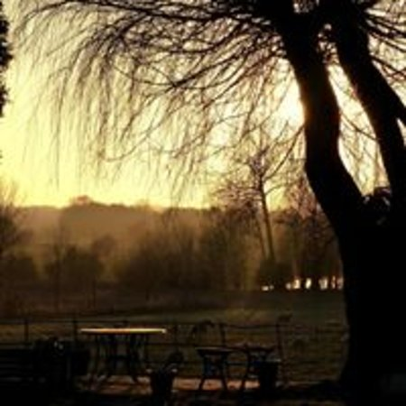 View from Riverside garden