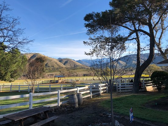 Lazy J Ranch-Americas Best Value Inn: Vistas desde el rancho