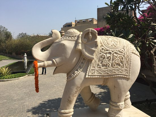The Oberoi Amarvilas: Decorated Elephants guard the door!
