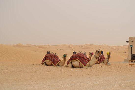 Zdjęcie Al Khatim