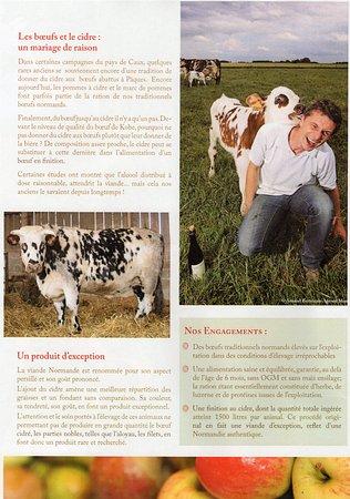 Tourny, France: Bœuf cidré chez nous...