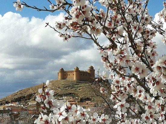 La Calahorra, España: IMG-20180316-WA0006_large.jpg