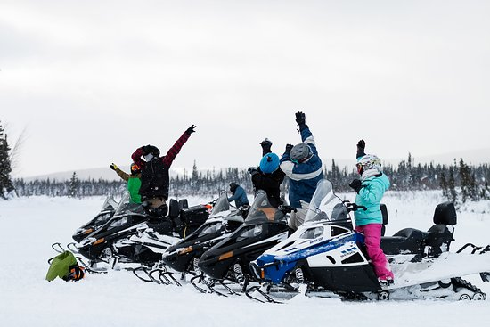 Fairbanks, AK: Local Tour - Excitement on the trail!