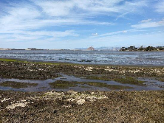 Los Osos, Kaliforniya: Bay view