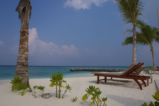 Olhuveli Beach Spa Maldives Grand Villa Outside By Pool