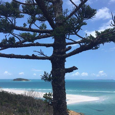 Queensland, Australie : photo3.jpg