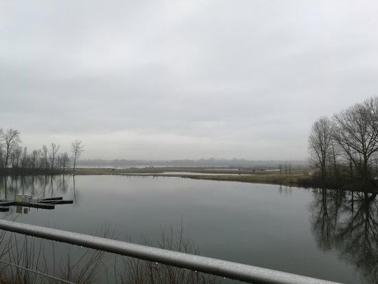 Dilsen-Stokkem, Belgium: de Oude Maas : vergezicht vanop het terras