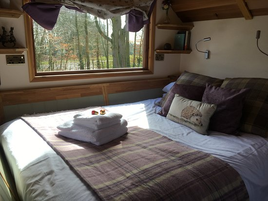 Kirkby Mallory, UK: Hedgehog Lodge, cosy and comfortable.