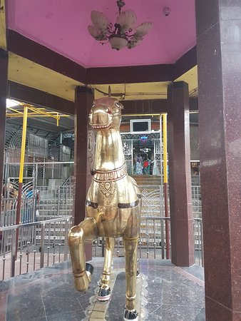Majhighariani Temple: horse infront of temple