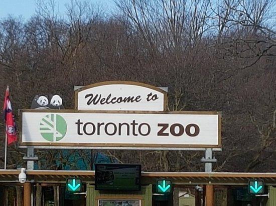 Toronto Zoo : 20180315_090544_large.jpg