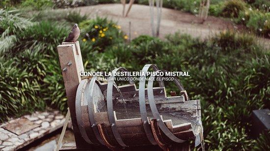Pisco Elqui, Chile: Destilería Pisco Mistral: Un lugar único donde nace el Pisco.