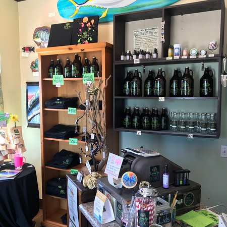 living tea brewing co picture of living tea brewing co oceanside