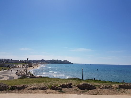 Jaffa Slope Park: 20180313_131029_large.jpg
