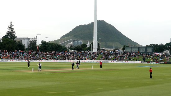 Bay Oval Cricket Ground
