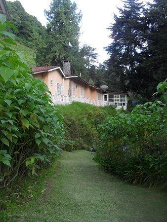 Las Orquideas Bed & Breakfast: Las Orquideas B&B area del jardin