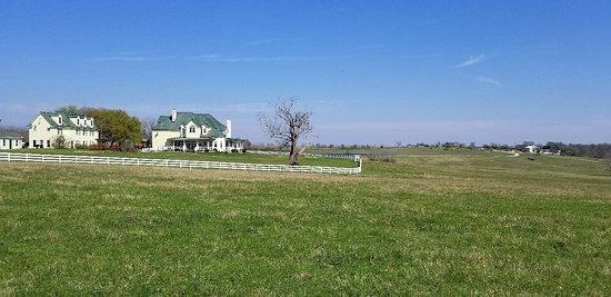Lillian Farms Country Estate照片