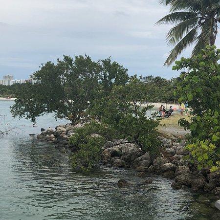 北邁阿密海灘照片