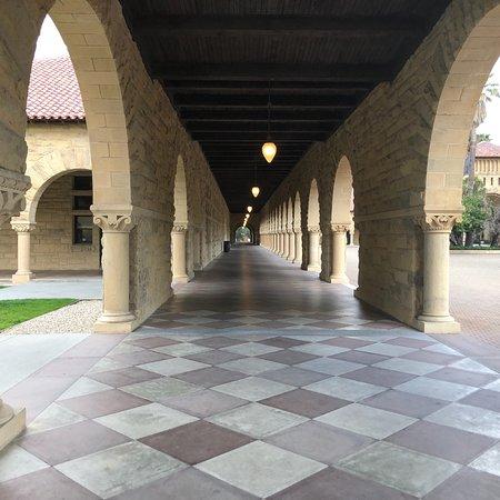 Stanford University: photo1.jpg