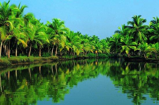 Explorador dos Mares Kochi Shore...