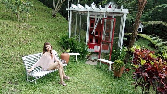 Padma Hotel Bandung: IMG_20180317_103959_large.jpg