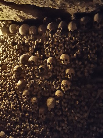 Les Catacombes De Paris : padrões decorativos