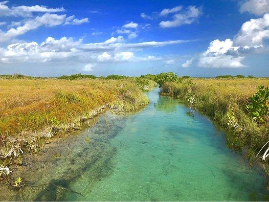 Indigena Maya Ecotours
