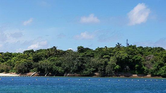 Green Island, Australia: received_1411747302270127_large.jpg