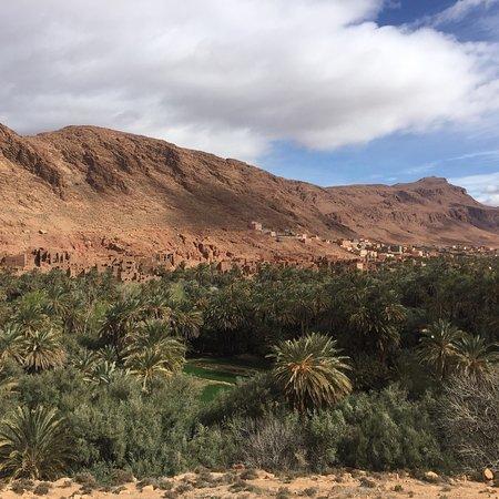 Sahara Exploring Expedition Day Tours: photo4.jpg