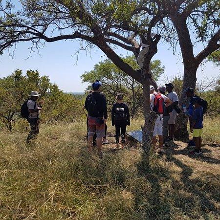 Soshanguve, แอฟริกาใต้: IMG_20180304_134625_140_large.jpg