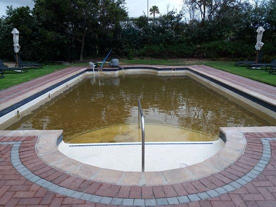 Milnerton, Sydafrika: Piscine avec eau douteuse !