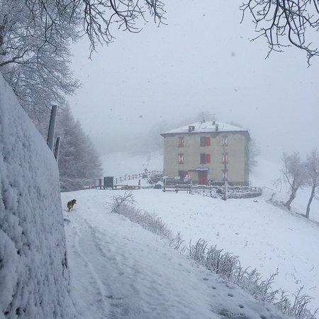 Schignano, Italy: Rifugio Prabello