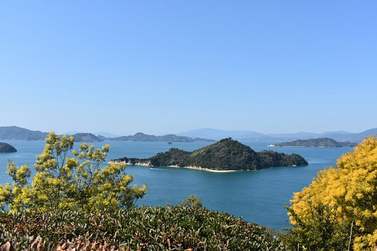 Takehara, ญี่ปุ่น: DSC_0936_1_large.jpg