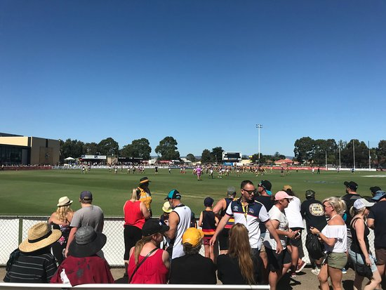 Port Adelaide, Australia: Port vs Crows - JLT series. Hot day and little shade to be had!