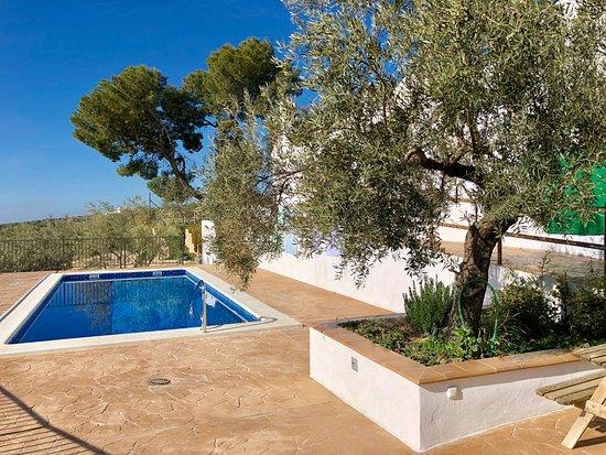 Cortijo El Horcajillo Casa Rural: Piscina con vistas panorámicas