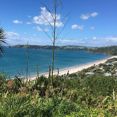 Onetangi, New Zealand: photo5.jpg
