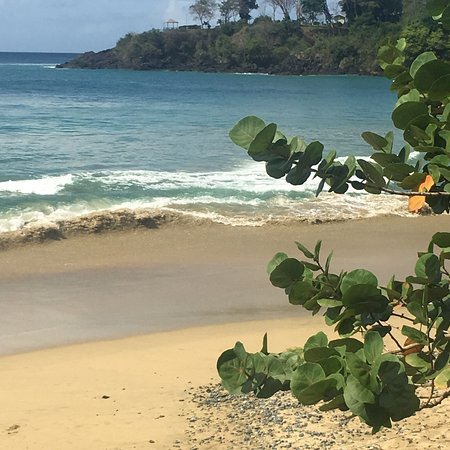 Black Rock, Tobago: photo6.jpg