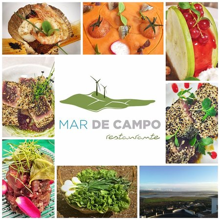 Benalup-Casas Viejas, Spain: Mar de Campo