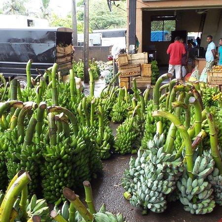 Dambulla Dedicated Economic Centre: photo2.jpg