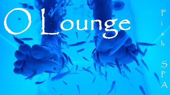 ‪O Lounge Fish SPA‬