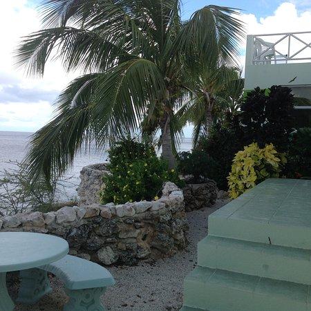 Bahia Apartments & Diving : photo2.jpg