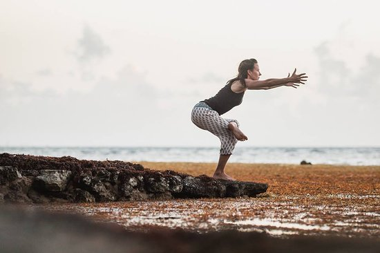 Salty Dog Yoga & Surf