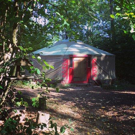 Forest Garden Shovelstrode: Kushti Yurt Sleeps 2