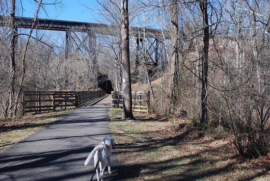 Lynchburg, VA: Nice, wide, paved trail.