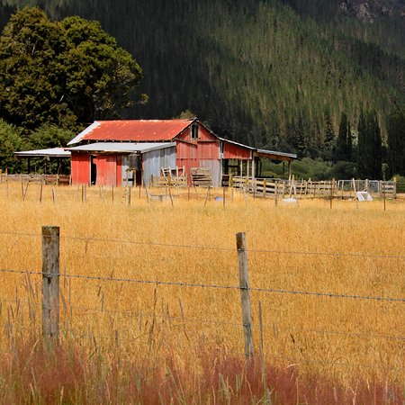 Murchison, New Zealand: Farmland on the road between Lake Rotoroa and Westport..
