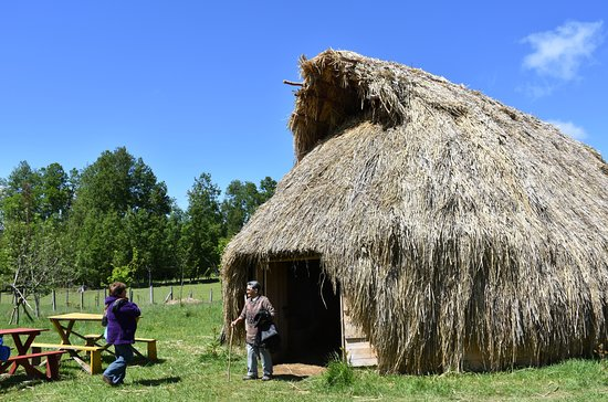 Fortin Mapuche