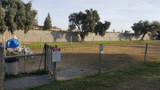 Corning, Kalifornien: Large Fenced in Dog Park/Run
